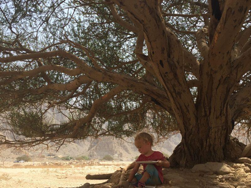 Stammbäume und Baumstämme