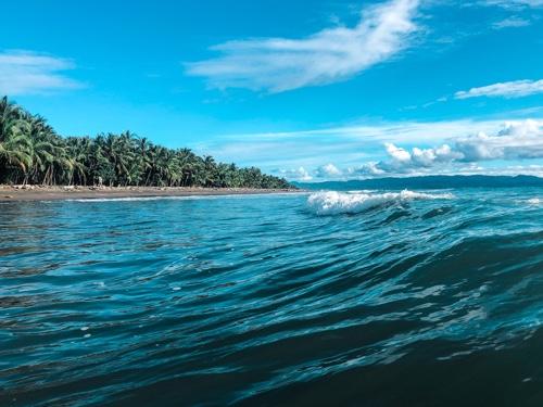 Im Takt der Wellen und Moskitos